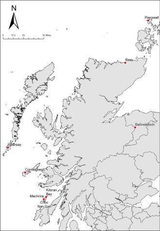 Trading Identities Alternative Interpretations of Viking Horse Remains in Scotland