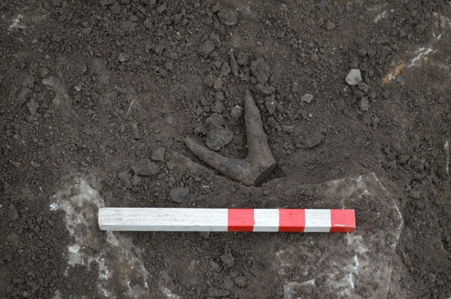 Antler-working debris from Trench Q